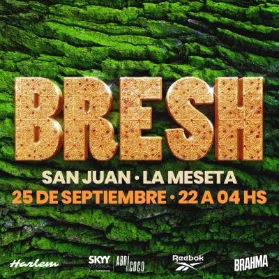 fiesta-bresh-en-san-juan-91982-rec.jpg